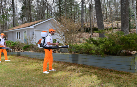 We treat areas of your property where mosquitoes live, rest, and hide.