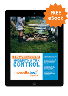 A Camper's Guide To Mosquito & Tick Control