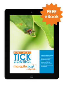 How to Tackle Tick Control