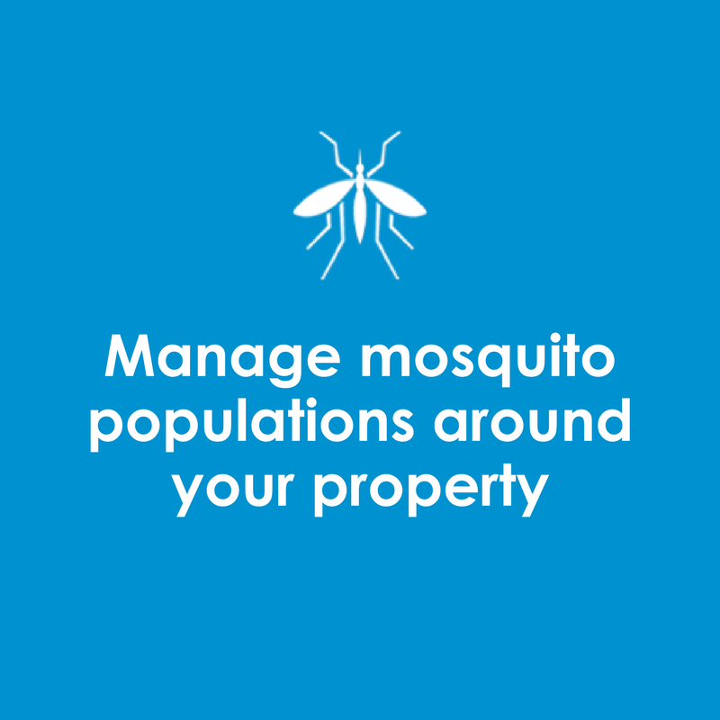 Manage Mosquito Populations around your property