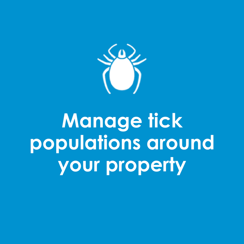 Manage tick populations around your property